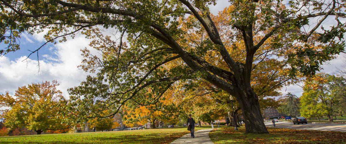 Student walking on sidewalk